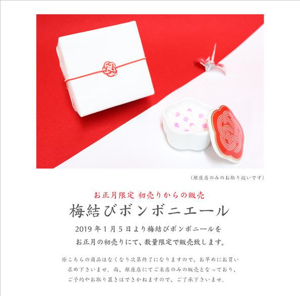 img.blog-ginza-umemusubi.jpg
