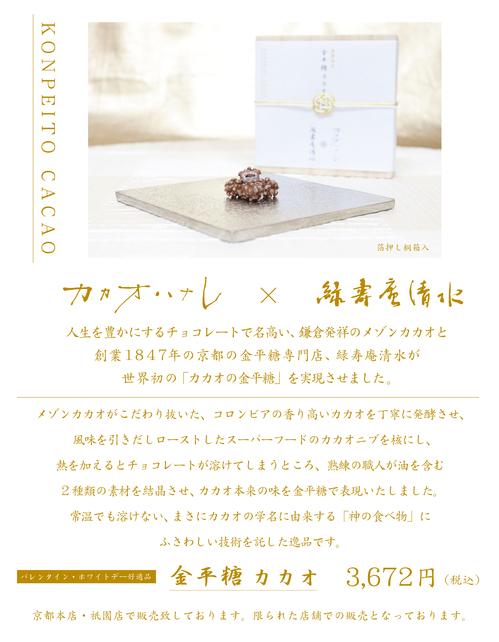cacao_blog_21_2.jpg